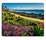 Mousepads Colorful Flowers and View of The Fishing Pier at Linda Lane Park in San Clemente California Image ID 37030137 250mm*300mm