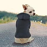 Idepet Haustier Kleidung Hundepullover Hunde Kleider welpen Pullover Hunde Warmer Mantel für Katzen Kleine Hunde Chihuahua Welpe Teddy Pudel (XL, Schwarz)