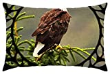 iRocket - American Bald Eagle F1 - Throw Pillow Cover (24