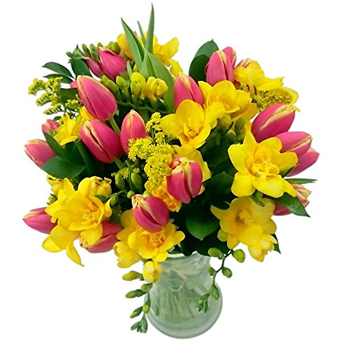 clare-florist-tulip-and-freesia-fresh-flower-bouquet
