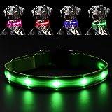 Pawow LED Leuchthalsband Hunde Leuchtend, Verstellbar USB Hunde Halsband Wiederaufladbar für Mittelgroße Grosse Hunde (Groß, Grün)