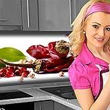 Küchenrückwand < Gewürz Mix > Premium Hart-PVC 0,4 mm selbstklebend 220x60cm