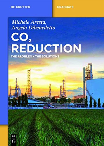 Carbon Dioxide: The Problem and Possible Solutions (De Gruyter Textbook)