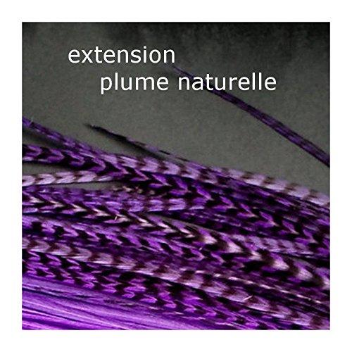 beaute design - 1 plume naturelle grizzly violet extension de cheveux 24 cm à 30 cm