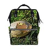 Best KAKA Backpacks For Kids - FAJRO Egg IncubateTravel backpack canvas Handbag School pack Review