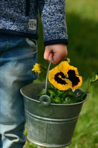 carrying-a-pretty-yellow-pansy-in-a-silver-bucket-flower-garden-journal-150-page-lined-notebook-diar