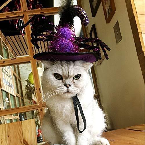 Qbisolo Haustier Hut Geister Kürbis Spinne Halloween Haustier -