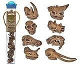 Safari Ltd Prehistoric Mammal Skulls TOOB