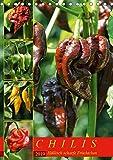 Chilis - Höllisch scharfe Früchtchen (Tischkalender 2019 DIN A5 hoch): Portraits von 12 verschiedenen, extra scharfen Chili Sorten (Monatskalender, 14 Seiten ) (CALVENDO Lifestyle)