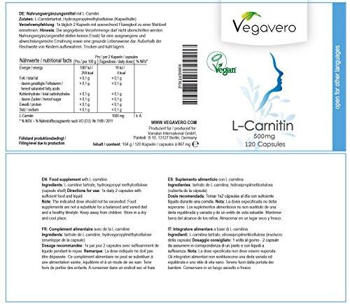 51jNMwOJFkL - L - Carnitina Vegavero | Purezza del 99,4 % certificata |  120 capsule - da 500 mg |