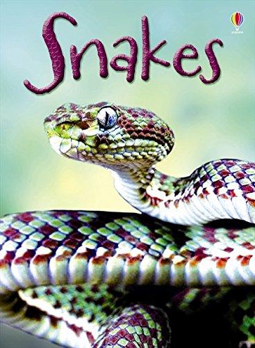 Snakes (Beginners Series)