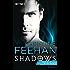 Stefano: Shadows Band 1 - Roman
