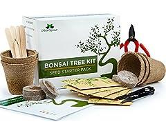 Idea Regalo - Kit albero bonsai, cresci il tuo albero bonsai a partire dal seme – Il set regalo include 5 varietà di alberi da piantare – Coltivazione al chiuso con istruzioni dettagliate