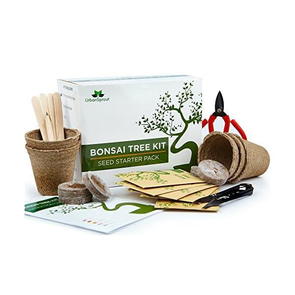 Kit Bonsai – Kit per crescere il tuo Albero Bonsai a partire dal seme – Regali originali per amanti giardinaggio e piantine – Set Regalo con 5 varietà di Alberi Bonsai – Con istruzioni