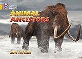 Animal Ancestors: Band 09/Gold (Collins Big Cat)