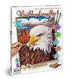 Noris Schipper 609240665 - Malen nach Zahlen - Weißkopfseeadler