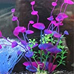 bismarckbeer Artificial Aquatic Plants, Fish Tank Aquarium Plastic Plant Grass Water Plants Decor Ornament 6