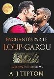 Enchantés par le Loup-Garou: Une Romance Métamorphe M-M (Loups-Garous de Singer Valley t. 2)