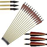 Frecce di caccia di 6pcs Freccia di caccia di albero di legno Broadhead ricorrente Longbow lungo