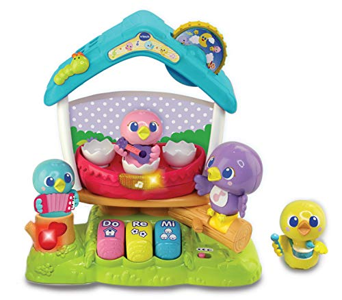 VTech Singing Bird House Baby Musical Toy, Educational Baby Toy with Colours, Numbers, Letters and Sounds, Electronic ABC Preschool Toy Suitable for Boys & Girls for 12 Months, 2 & 3 Year Olds