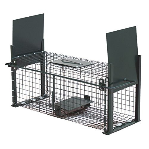 Moorland Safe 5006 Lebend-Falle 50x18x18cm als stabile Marder-Falle, Kaninchen-Falle, Katzen-Falle mit 2 Eingängen… (Katzen Käfig-falle Für)