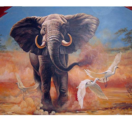 Yqgdss Dibujos para Colorear con Números sobre Lienzo, Animales, Elefantes, Carteles En...