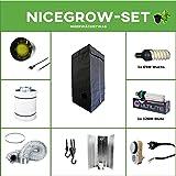 Growset 60 Airontek Komplettset ESL Grow 65W Wuchs 125W (85W) Blüte