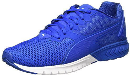 25c51d2ee90 Puma Men s Ignite Dual Mesh Lapis Blue-Quarry Running Shoes - 11 UK India