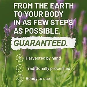 Schlafhilfe 600 mg Kapseln von Nutritrust® - pflanzliche & natürliche Beruhigungsrezeptur mit Tryptophan, Kamille und weiteren natürlichen Zutaten - unterstützt & fördert den gesunden Schlaf from Nutritrust