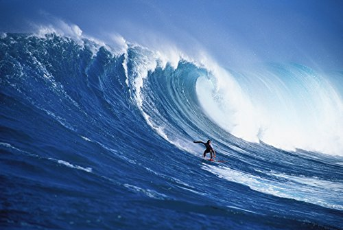 The Poster Corp Erik Aeder/Design Pics - Hawaii Maui Peahi Buzzy Kerbox Surfing Big Wave Curling and Crashing Behind Photo Print (86,36 x 55,88 cm)