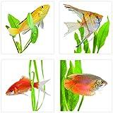 Plage 260502 Fliesen Sticker Smooth, Fische, 4 Blätter, 14,5 x 14,5 cm