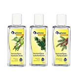 Forest Scent - Walk in the Woods Sauna Infusion: Spruce Needle, Mountain Pine, Nordic Birch (3x190 ml) from Spitzner