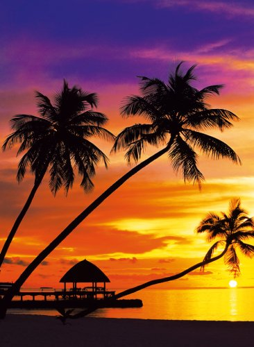 Clementoni - 31975 - Puzzle Collezione Alta qualità Tropic Beach - Puzzle Collezione Alta qualità 1500 Pezzi
