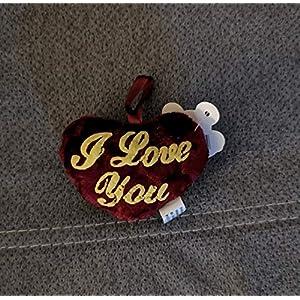 Herz mit besticktem (I Love you)