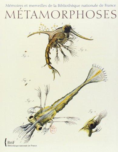 mtamorphoses-le-monde-fascinant-des-insectes-mmoires-et-merveilles-de-la-bibliothque-nationale-de-france