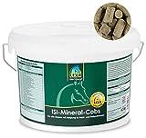 Lexa - Isi-Mineral-Cobs - Mineralfuttermittel für Pferde - 4.5 kg