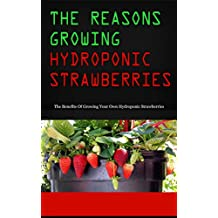 The Reasons Growing Hydroponic Strawberries: The Benefits Of Growing Your Own Hydroponic Strawberries (English Edition)