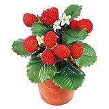 Deko-Woerner Erdbeerpflanze im Topf 18cm