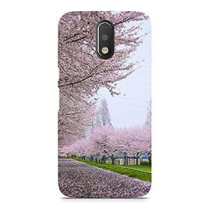 Hamee Designer Printed Hard Back Case Cover for Nokia 5 Design 5298