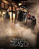 Laminiert Mini Poster Fantastic Beasts Magical Group 40 x 50 cm