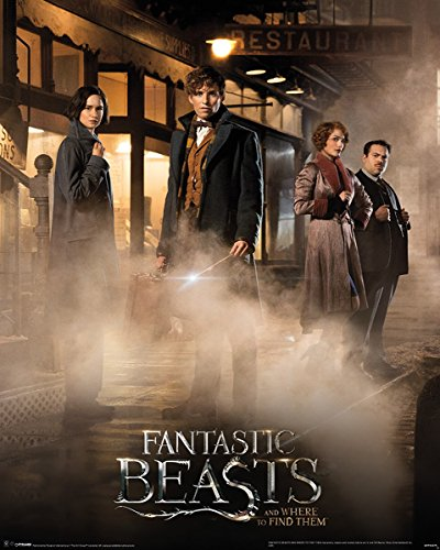 Fantastic Beasts and Where to Find Them Mini Poster Magical Group 40 x 50 cm Laminato