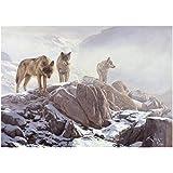 La Manada - Lámina sobre lienzo. Cuadro de lobo ibérico (Canis lupus signatus) 40 x 28 cms. Cuadros de lobos, animales