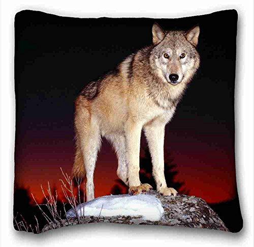 Pillow-top-king-size-matratze (Soft Kissen Case Cover Tier Kissenbezüge Standard Größe 40,6x 40,6cm Design Kissen Schutzhülle geeignet für king-bed strapazierfähig Muster 10)