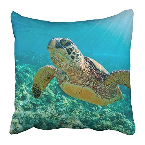 Yuerb kissenbezüge Green Maui Sea Turtle Close Up Over Coral Reef in Hawaii Snorkel Swim Underwater Environment Dive Polyester 18 X 18 Inch Square Hidden Zipper Decorative Pillowcase -
