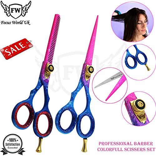 Lot de ciseaux professionnels pour cheveux et ciseaux à effiler 14 cm + étui de présentation