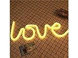 Best enseigne au néon - LridSu LED Love Neon Signs Love allument Les Review