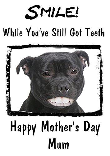 Chien Chien Happy Mother's Day carte dents Humour Chmd121 A5 de voeux personnalisée