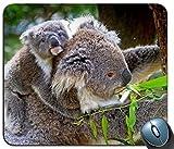 Mauspad, Koala-Baby-Baum-Eukalyptus 107755 personifizierte Rechteck-Mausunterlage, Gedruckter Rutschfester Gummi-Bequeme kundengebundene Computer-Mausunterlage