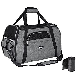 feandrea foldable pet dog carrier handbag with shoulder strap, for car, train and airplane travel, garbage bag included, grey, pdc42gy FEANDREA Pet Carrier, Dog Carrier, Pet Transport Bag, Black PDC42GY 51jQcTrHCoL