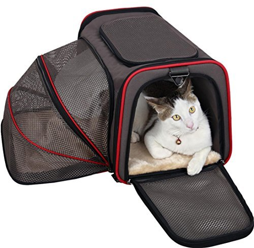 Petsfit Expandable Travel Top Zip Open Dog Carrier, Strong Wire Frame Fabric Cat Carrier, Portable Soft Sides Pet Carrier with Fleece Pad, Shoulder Strap Used for Car, Back Belt Used for Luggage, Medium, Grey